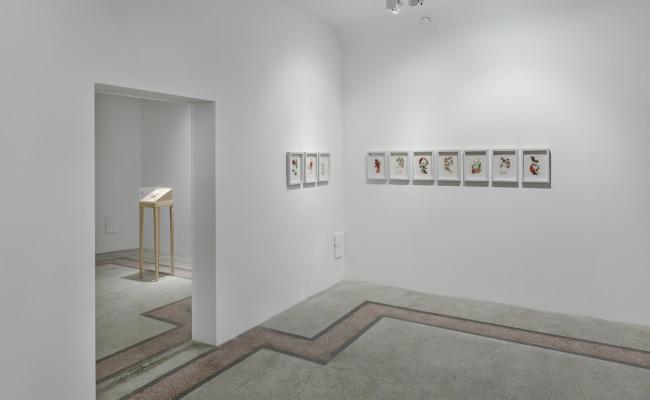 Kasa Galeri_Eylül-11