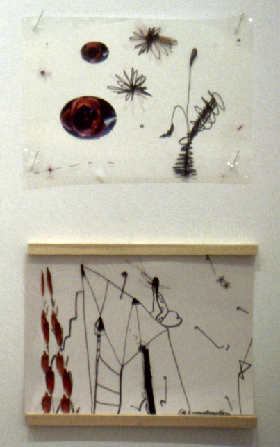 The Beginnings; Different Approaches to the Drawing 2001