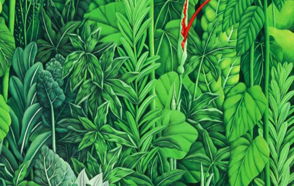Wizard of the Great Green World: Nadide Akdeniz
